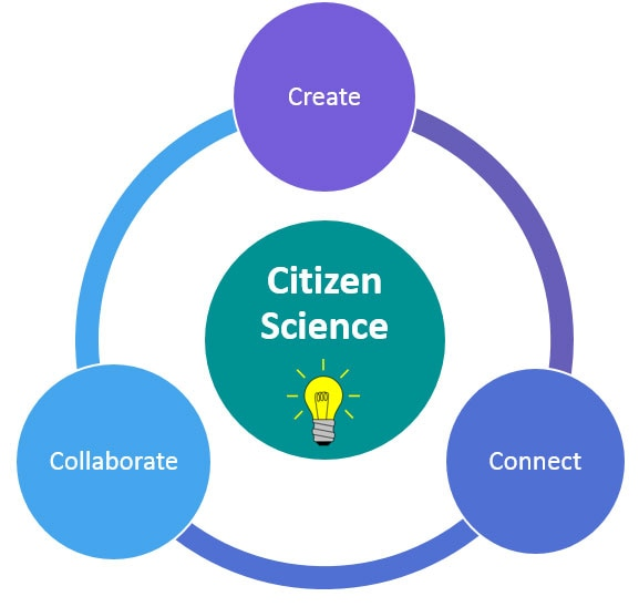 "Graph that reads,""create, collaborate, connect"" in a circle around the words ""Citizen science"""