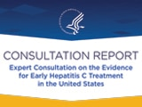 Thumbnail image of HCV Consultation Report