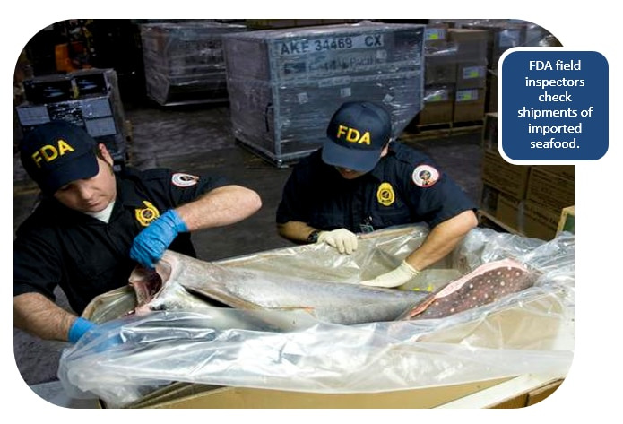 FDA field inspectors check shipments of imported seafood.