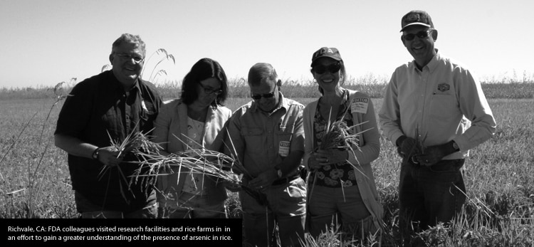 FDA colleagues in a field research arsenic in rice
