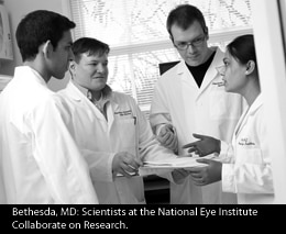 National Eye Institute scientists discussing research