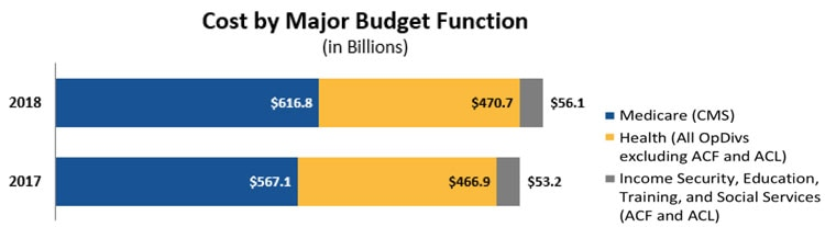 Cost by Major Budget Function (in Billions)