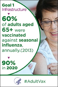 Goal 1 infrastructure - 60% of adults aged  65+ were vaccinated against seasonal influenza, annually (2013). 90% in 2020.