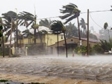 Houses and palm trees hit by rain and heavy wind