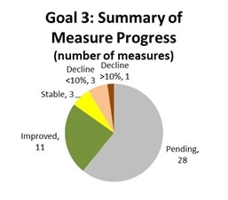 Goal 3: Summary of measure progress