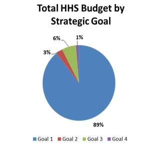 Total HHS Budget by Strategic Goal